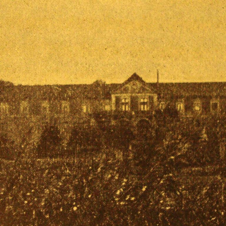 Quinta de Almiara - Fotografia de Elisa Nazaré Barbosa, 1940